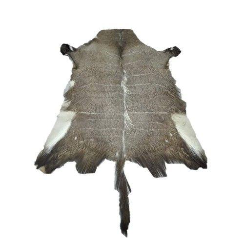 Tappeto in pelle Nyala africana 130x120 cm Zerimar - 1