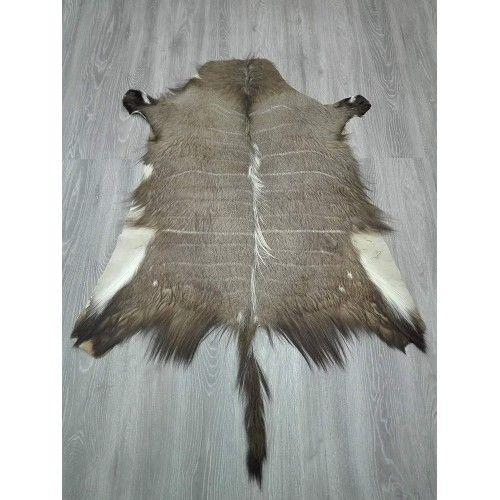Tappeto in pelle Nyala africana 130x120 cm Zerimar - 2