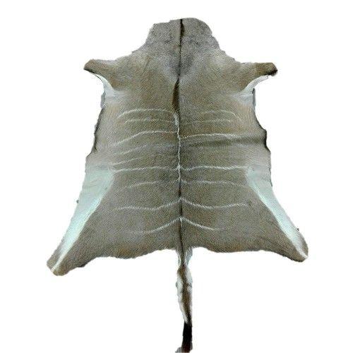 Tappeto in pelle Kudu naturale africana 165x130 cm Zerimar - 1