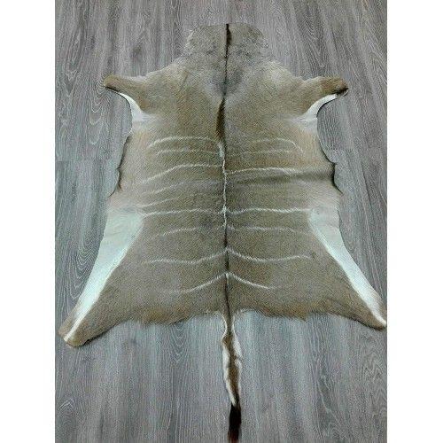Tappeto in pelle Kudu naturale africana 165x130 cm Zerimar - 2
